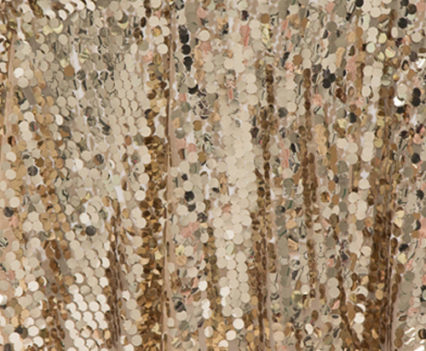 Champagne Luxe Sequin