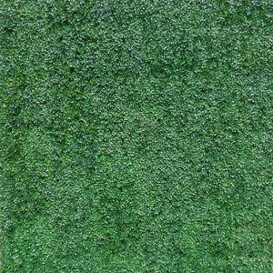 grass wall backdrop photo booth boutique in s florida